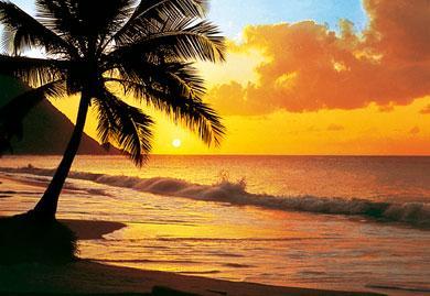 photo-murale-d-coucher-soleil-sur-plage-8-panneaux-a-coller--6840448.jpg