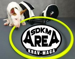 SDKM AREA - Ragnar - 1920x1080